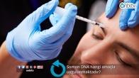Somon DNA hangi amaçla uygulanmaktadır?
