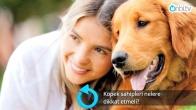 Köpek sahipleri nelere dikkat etmeli?