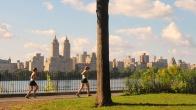 Zayıflamak için yürümek mi yoksa yüksek tempolu sporlar mı işe yarıyor?