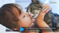 Çocuklara evcil hayvanları öldüğünde ne söylenmeli?