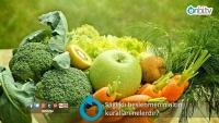 Sağlıklı beslenmenin altın kuralları nelerdir?