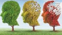 Alzheimer nasıl fark edilir?