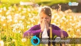 Alerjik hastalıklar nelerdir?