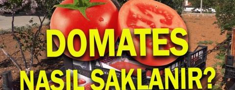 Sağlıklı Doğal Domates Pestili ve Domates Kurusu Yapımı