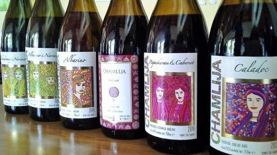 Kırklareli Şarap Rotası ve Doğa Harikası İğneada